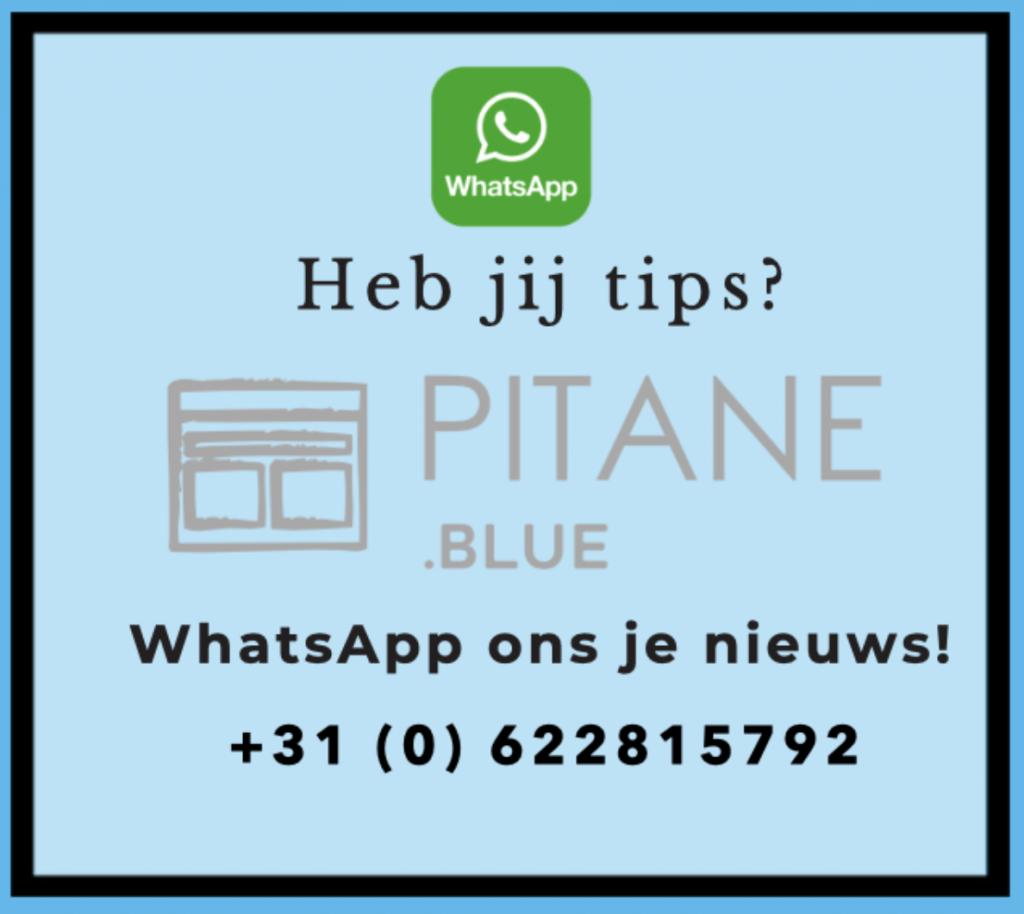 Pitane Blue WhatsApp